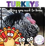Turkeys - a Thanksgiving Non-Fiction Science Unit