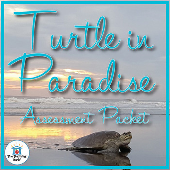 Turtle in Paradise Assessment