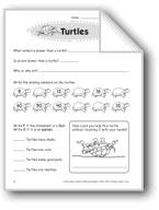 Turtles (Thinking Skills)