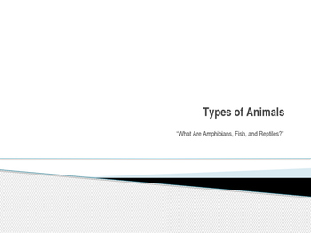 Types of Animals, Lesson 3
