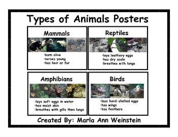 Types of Animals Posters