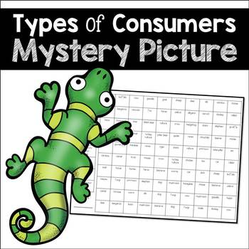 Types of Consumers Mystery Picture