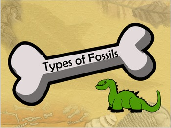 Types of Fossils PPT Activity