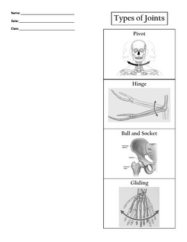 Types of Joints Foldable