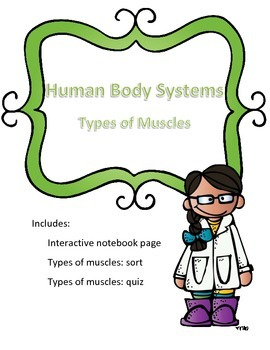 Types of Muscles- Bundle