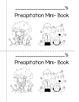 Types of Precipitation Mini Book