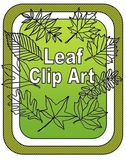 Leaf Clipart: Types of Tree Leaves Line Drawings