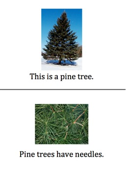 Types of Trees Easy Reader
