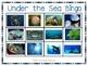 Under the Sea Bingo Cards