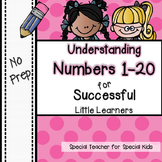 Understanding Numbers to 20  ***NO PREP***