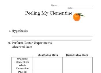 Understanding Qualitative and Quantitative Data