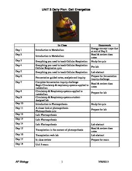 Unit 3 Daily Plan - Energy