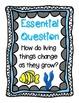 Unit 4 Lesson 17 Kindergarten Journeys HMH Supplemental Unit