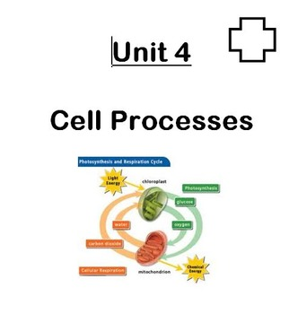 Unit in a Folder: Cell Processes (Photosynthesis/Respirati