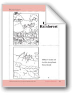 Up into the Rainforest: Take-Home Book