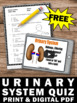 FREE Download Human Body Urinary System Activities for Sci