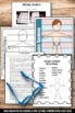 Urinary System Science Interactive Notebook for Human Body Unit