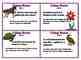 Using Rates Common Core 6 Ratio Proportion Task Cards Set