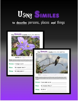 Using SIMILES to describe persons, places or things