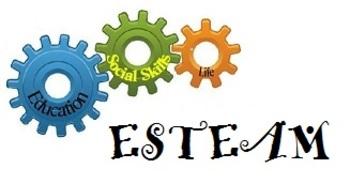 Social Skill Steps Poster - VERBAL COMMUNICATION  - ESTEAM