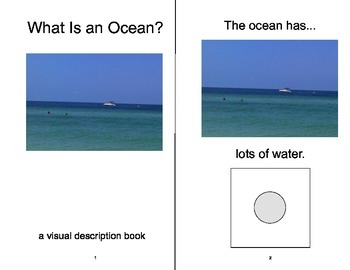 VOCABULARY PACKAGE Ocean & Beach ADAPTED BOOKS, Speech The