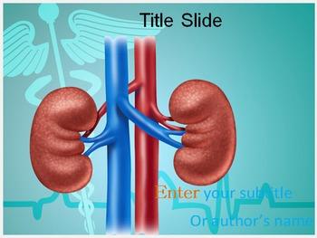 Vascular PowerPoint Templates