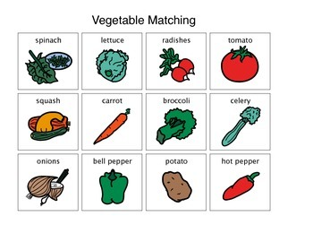 Vegetable Activity Matching