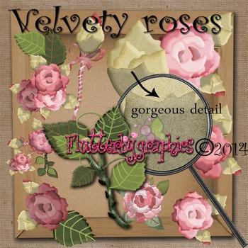 Velvety_roses