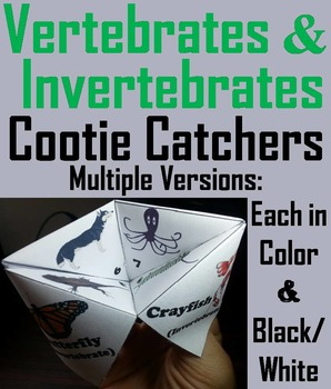 Vertebrate and Invertebrate Animals Activity/ Foldable (Sc