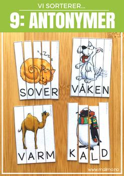 Vi sorterer 9: Antonymer [BM&NN]