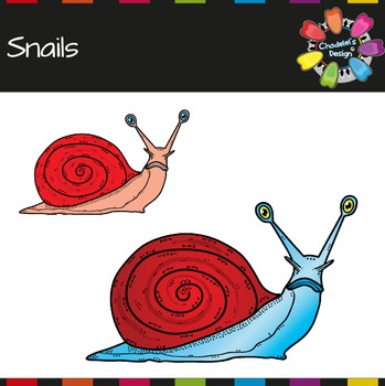 Vibrant Snails