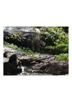 Videos Waterfall in tropical forests Part 2 (0.14 sec)