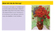 Vincent Van Gogh Flower Painting Project PowerPoint Presentation