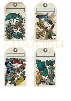 Vintage Colorful Insect Tags, Dragonflies, Beatles, Moths,