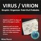 Virus Foldable