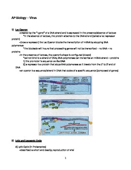 Virus - Quick Review Notes (Handout / Outline / Study Aid)