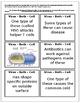Viruses and Cells Comparison Activity (4C)