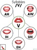 Visual Syllable Webs - Articulation Sounds at the Syllable Level