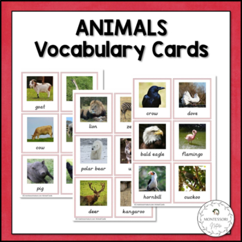 Vocabulary Cards - Animals - Montessori Toddler Printables