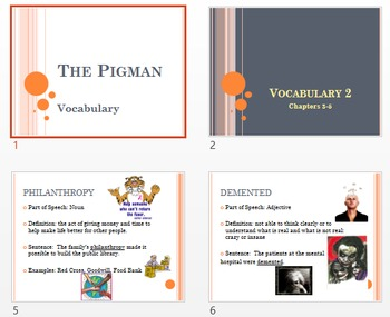 Vocabulary PowerPoints for The Pigman by Zindel