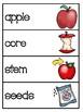 Apple Activities: Apple Vocabulary Booklet