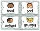 Vocabulary Write the Room: Emotions Set