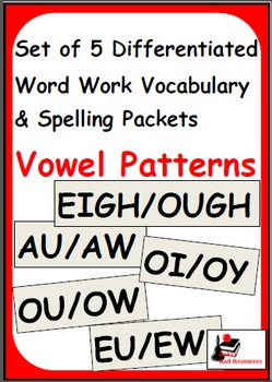 Vowel Patterns - Set of 5 Differentiated Word Work and Voc