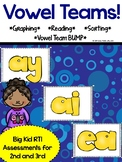 Vowel Team Assessment Pack - ai, ay, ea