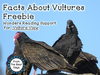 Vultures Facts:  A Wonders Reading Support for Vulture View