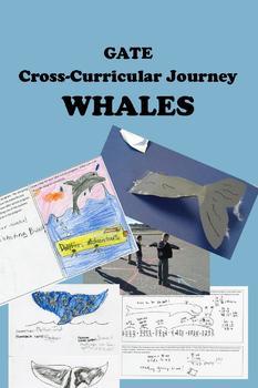WHALES & Dolphins -- Cross-Curricular Adventure Upper Elem