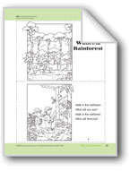 Walk in the Rainforest: Take-Home Book