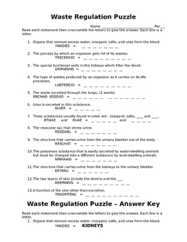 Waste Regulation Puzzle