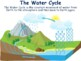 Water Cycle Lesson - classroom unit, study guide, state exam prep
