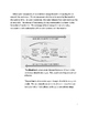 Water Cycle Literacy and Lab Activity